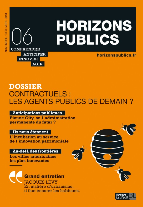 Revue Novembre Decembre 2018 Contractuels Les Agents Publics De